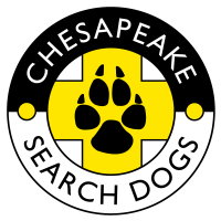 CSD Logo 0200